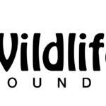 Wildlife Aid Foundation - Wild Animal Rescue Centre in Surrey