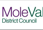 Social Services Mole Valley